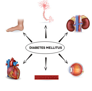 High blood sugar levels affects nerves, kidneys, eyes, blood vessels, heart and skin...
